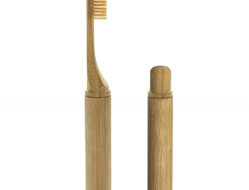 2 in 1 Travel Bamboo Toothbrush with Bamboo Case